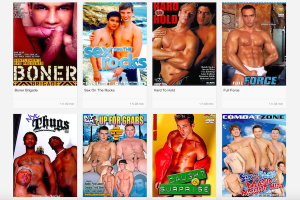 Great adult paid site with stunning gay content