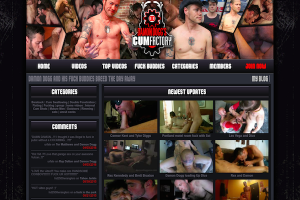 Great pay gay website to access hot gay videos