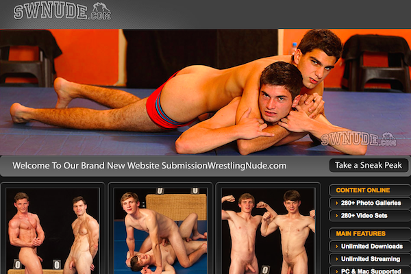 Most popular paid site if you're into awesome gay quality porn